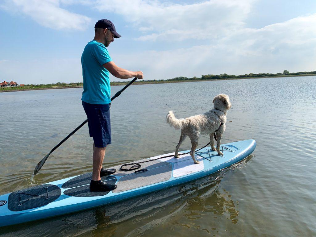 standup paddleboard med hund